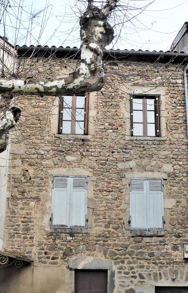 Offres de vente Immeuble Thurins (69510)